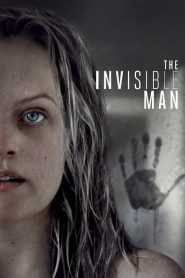The Invisible Man (2020) HD Hindi Dubbed