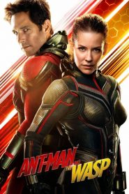 Ant-Man and the Wasp (2018) HD Hindi Dubbed Watch Online