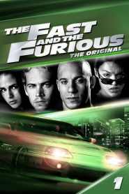 The Fast and the Furious (2001) Hindi Dubbed Watch Online