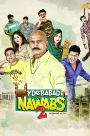 Hyderabad Nawabs 2 (2019) HD Full Movie Watch Online